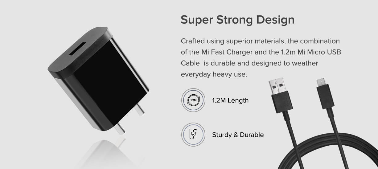 Mi 2A Fast Charger with Cable price in india